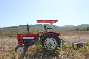 Tractor McCormick Case IH 523