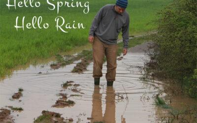 Hello Spring, Hello Rain