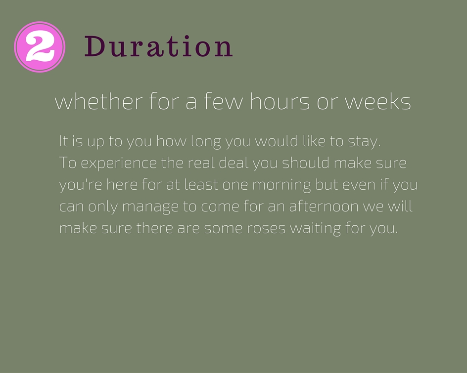 Duration of your stay